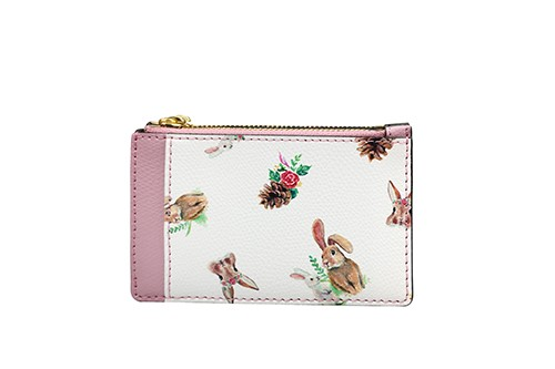 The Enchanting Card Case